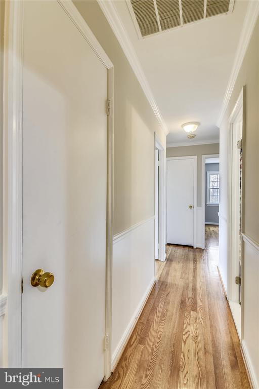 4 Bedrooms on Main Level, 5th on Lower Level - 8312 CHARTWELL CT, ANNANDALE