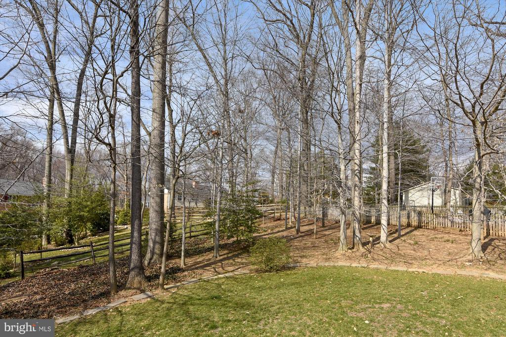Back Yard offers privacy, espec. in summer mos. - 8312 CHARTWELL CT, ANNANDALE