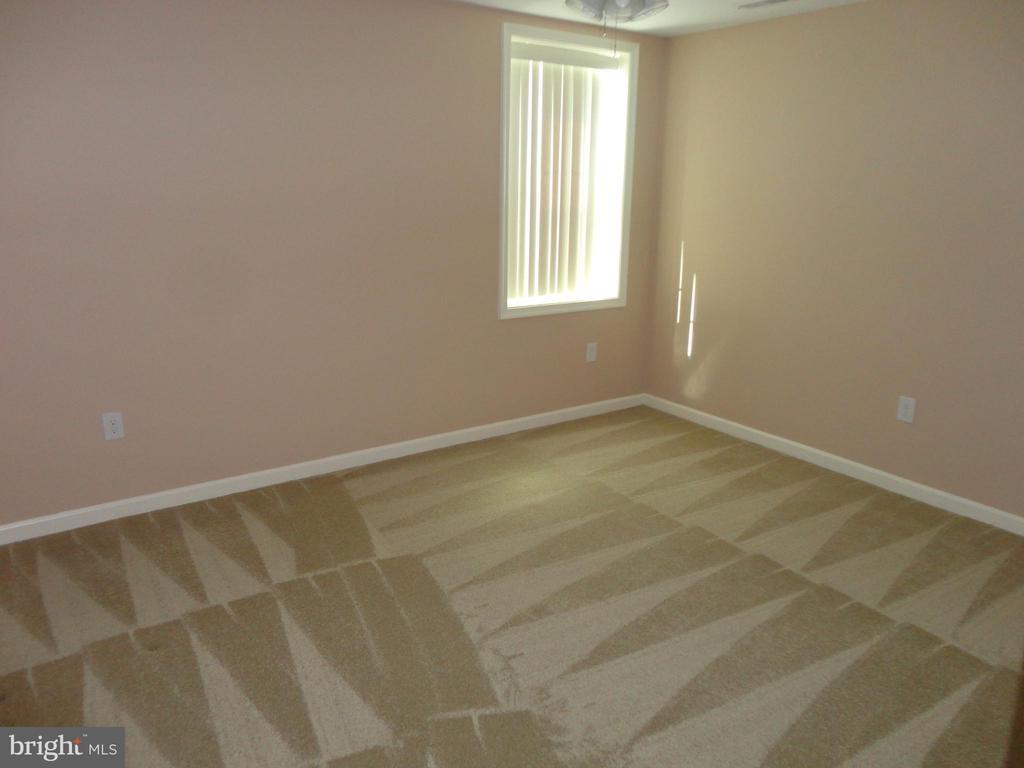 Basement Bedroom - 10415 NAPOLEON ST, FREDERICKSBURG