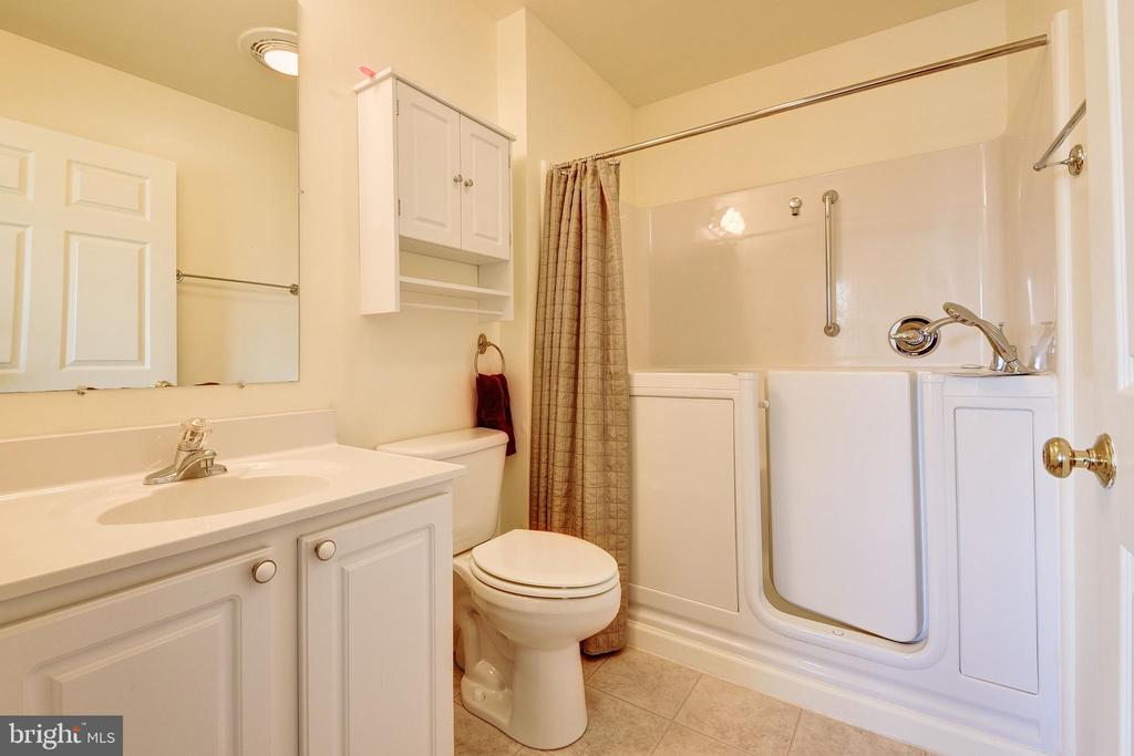 Guest home master bath - 7960 TALBOT RUN RD, MOUNT AIRY