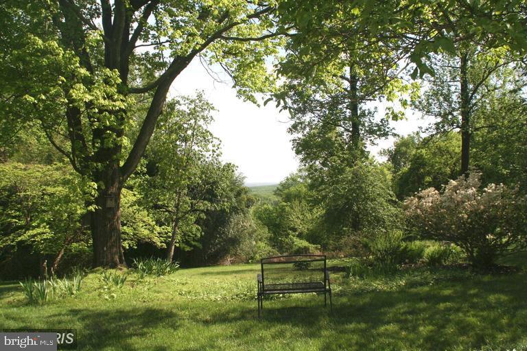 Summer view - 13410 GOODHART LN, LEESBURG