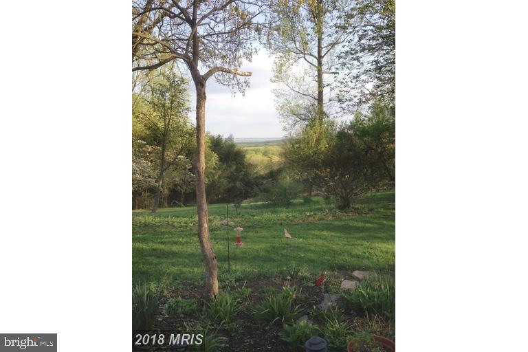 Spring - 13410 GOODHART LN, LEESBURG