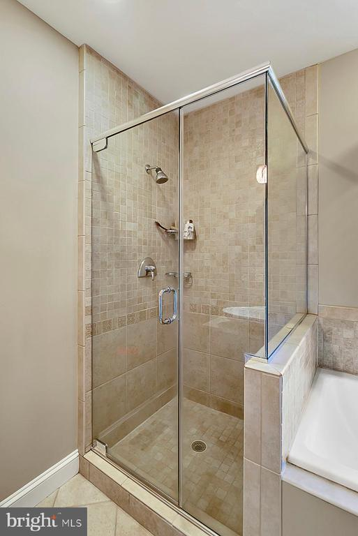 Separate shower in master bath - 38052 SNICKERSVILLE TPKE, PURCELLVILLE