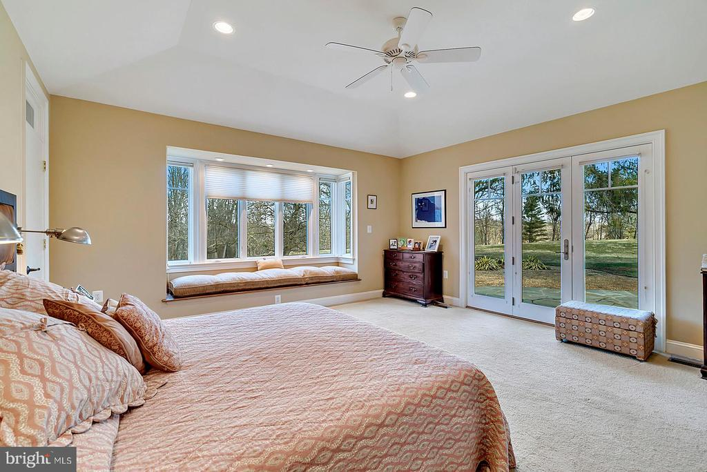 Master bedroom with French doors to terrace - 38052 SNICKERSVILLE TPKE, PURCELLVILLE