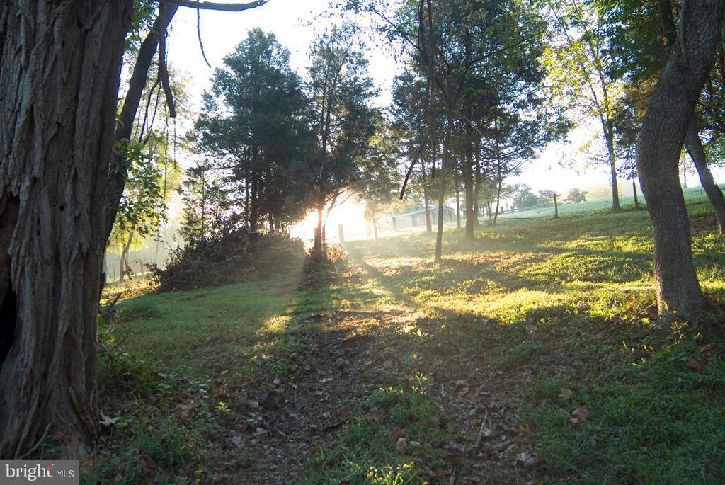 Beautiful woods - 38052 SNICKERSVILLE TPKE, PURCELLVILLE