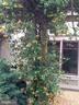 - 38052 SNICKERSVILLE TPKE, PURCELLVILLE