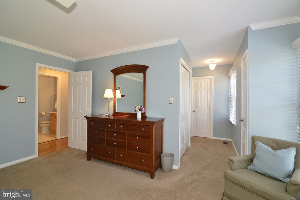 Master Bedroom with Hall of Closets to Master Bath - 13366 POINT RIDER LN, HERNDON