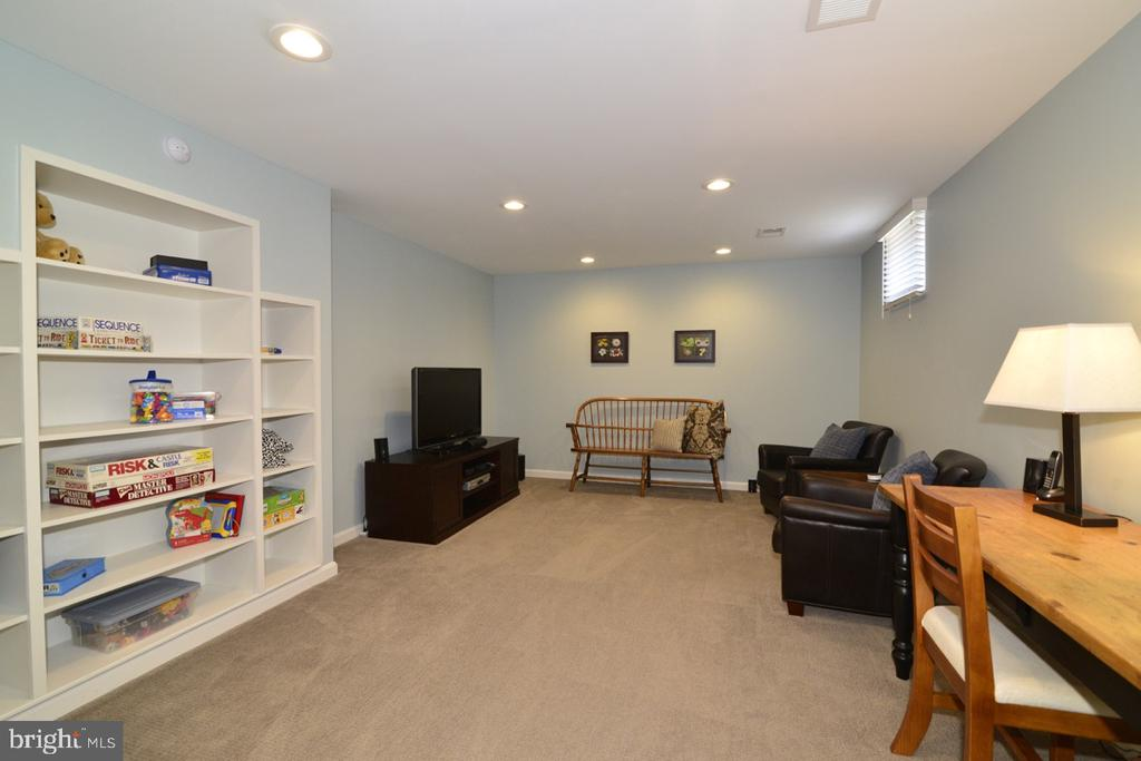 Rec/Game Room showing More Built-ins - 13366 POINT RIDER LN, HERNDON