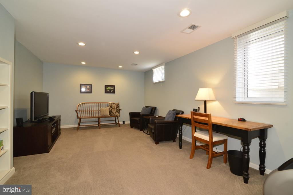 Rec/Game room in Lower Level - 13366 POINT RIDER LN, HERNDON