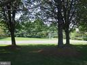 Common Green Space in Front of the Community - 13366 POINT RIDER LN, HERNDON