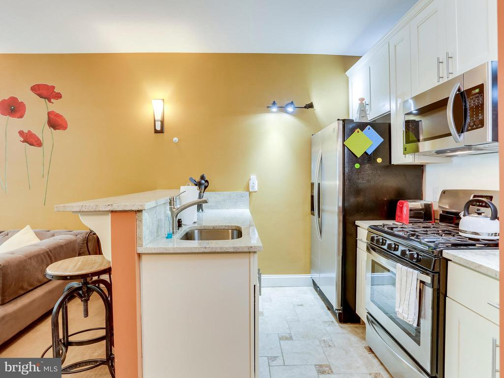 High end finishes in the kitchen - 727 6TH ST NE, WASHINGTON