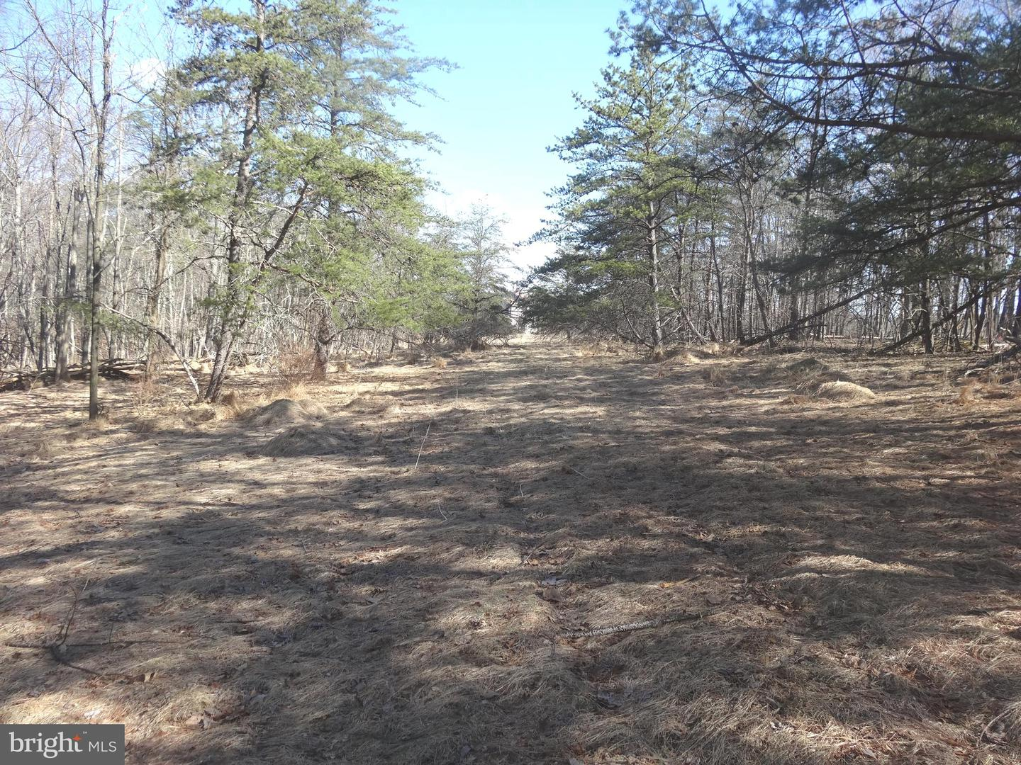 Land for Sale at Foxglove Ln Berkeley Springs, West Virginia 25411 United States