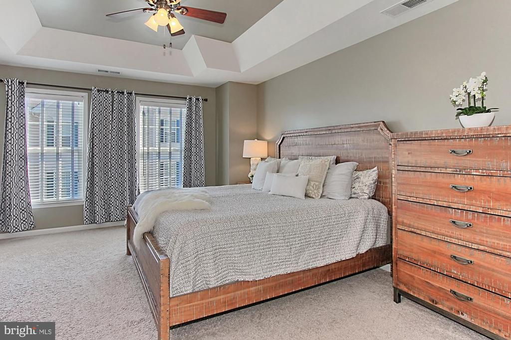 Fall in Love Owners Suite w/ Tray Ceiling + CF - 22638 TWITTER SQ, ASHBURN