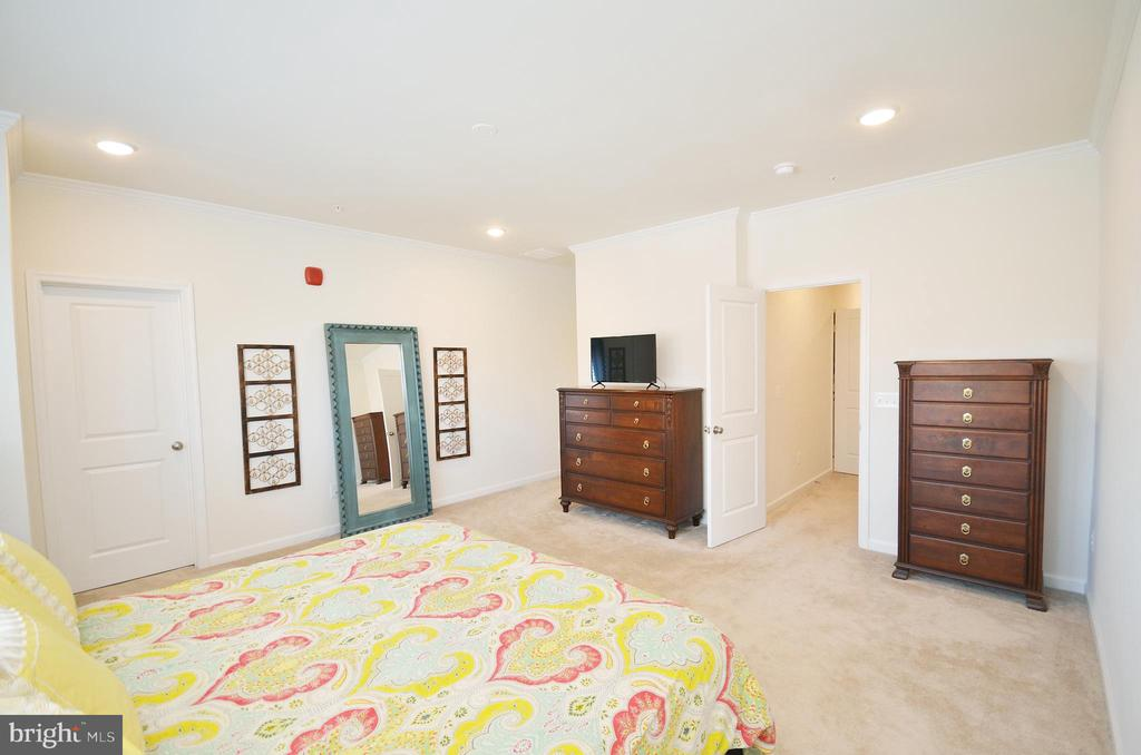 Master bedroom -- spacious with 2 w/i closets - 1320 RIBBON LIMESTONE TER SE, LEESBURG