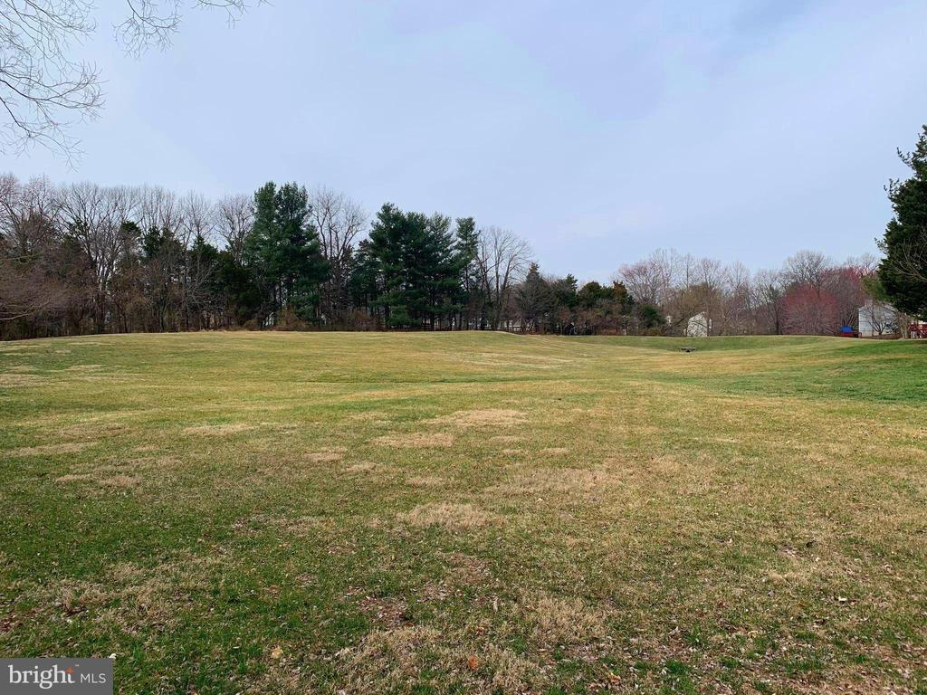 Common Green Space in Rear of the Community - 13366 POINT RIDER LN, HERNDON