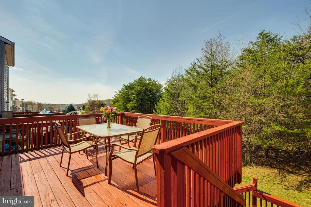 Deck and wooded view - 17381 SLIGO LOOP, DUMFRIES