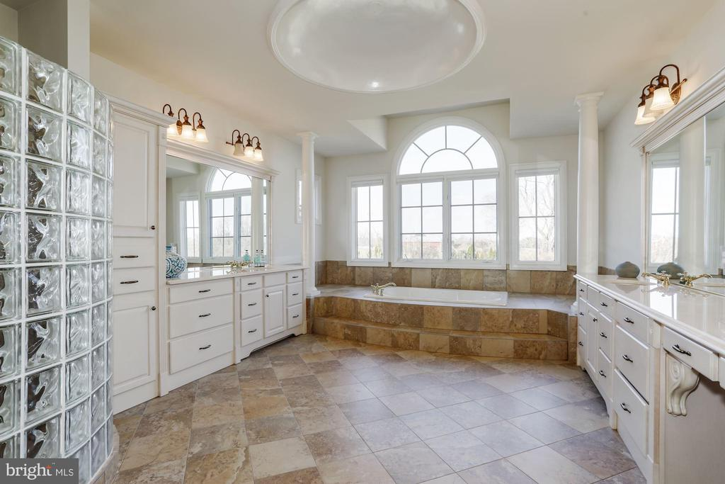 Spacious Master BR with Jetted Tub and - 40471 GRENATA PRESERVE PL, LEESBURG
