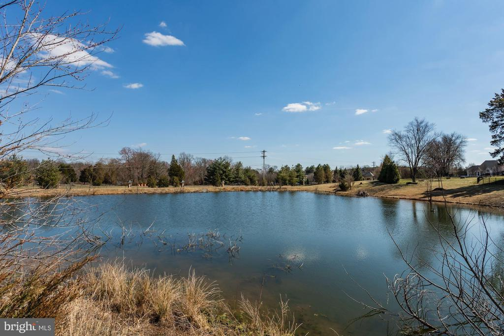 Water views!! - 40471 GRENATA PRESERVE PL, LEESBURG