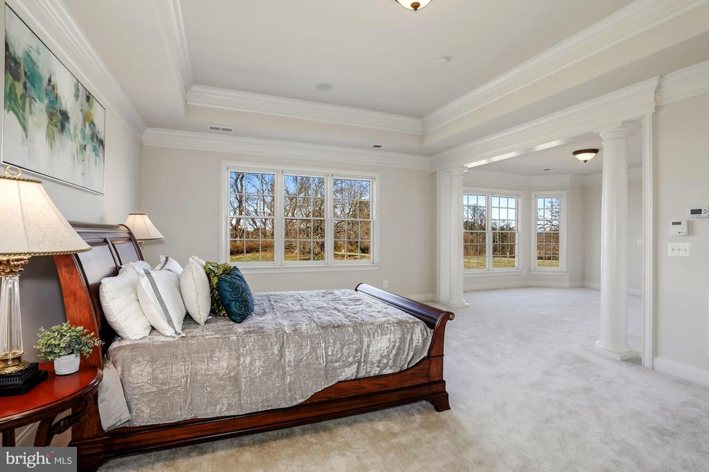 Master Bedroom with Sitting Area and Rear Views - 40471 GRENATA PRESERVE PL, LEESBURG