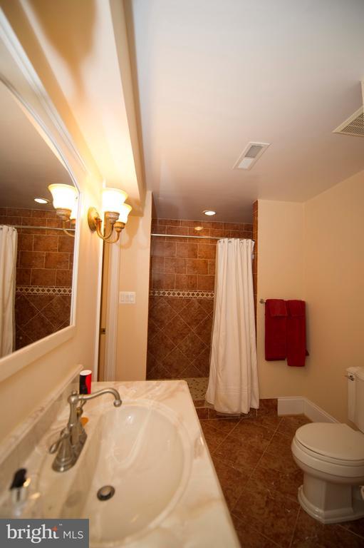 Basement Bathroom - 22778 OATLANDS GROVE PL, ASHBURN