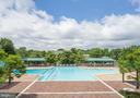 Swimming pool - 5505 SEMINARY RD #613N, FALLS CHURCH