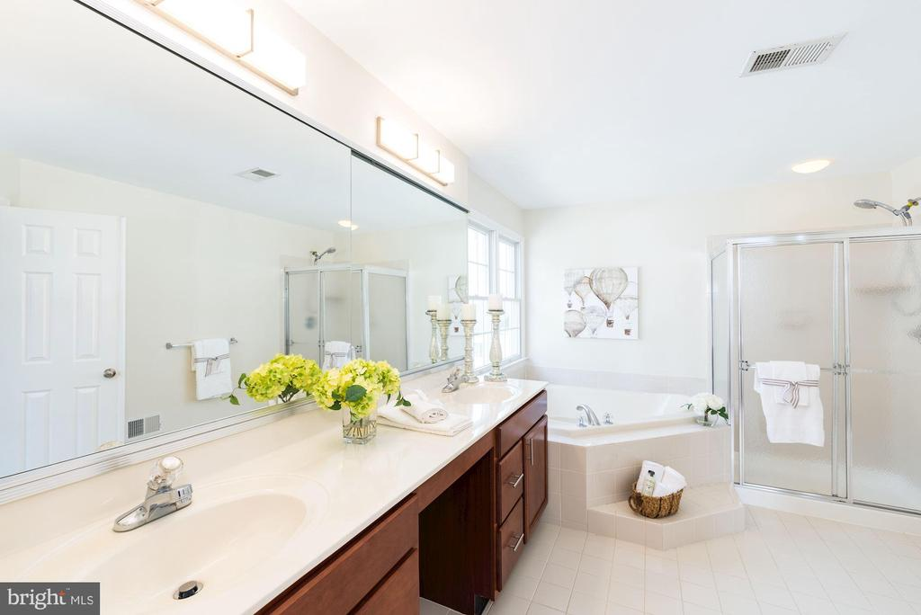 Bright and spacious master bath - 25948 DONOVAN DR, CHANTILLY