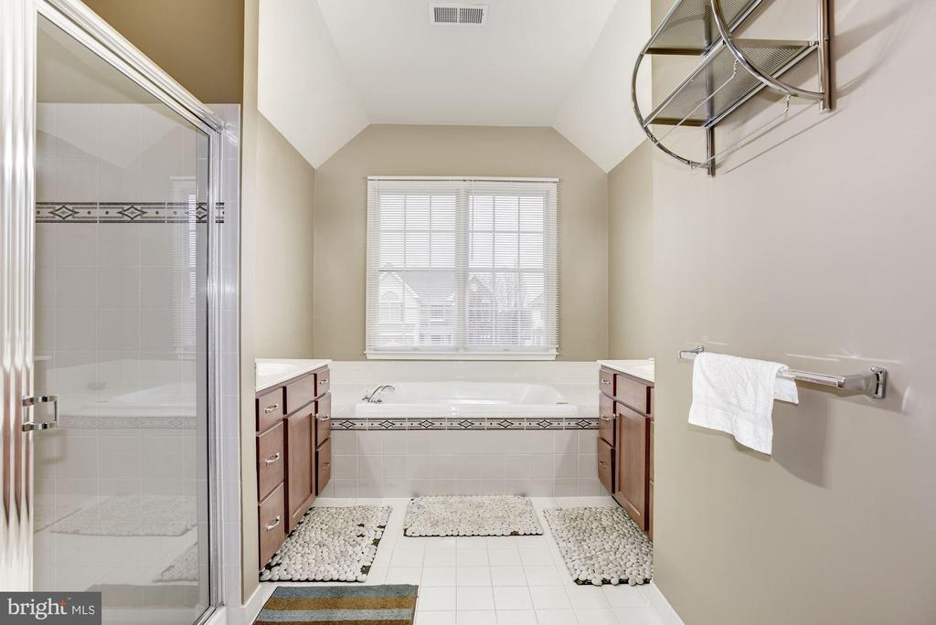 Luxurious Master Bath - 43895 CAMELLIA ST, ASHBURN