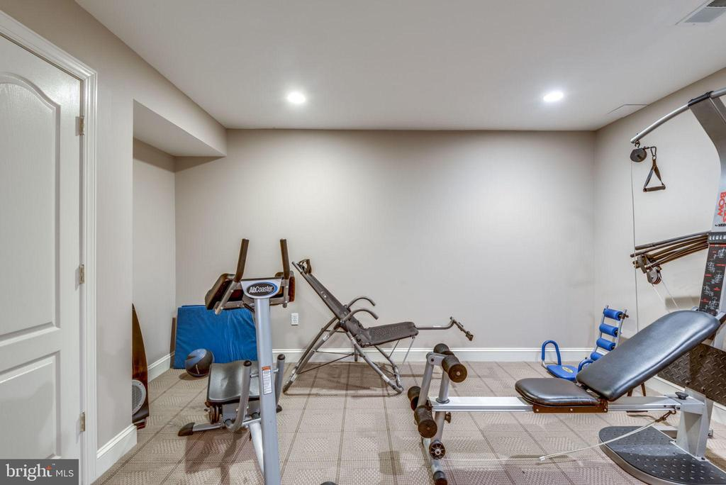Lower level exercise room - 20496 TAPPAHANNOCK PL, STERLING