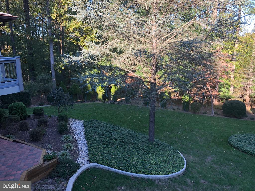 back  yard in fall - 8900 GLENBROOK RD, FAIRFAX