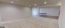 Large basement Rec Room - 25532 EMERSON OAKS DR, ALDIE