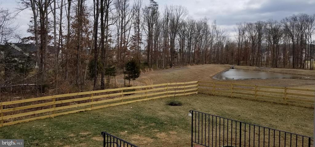 fenced yard with trees and retention pond - 25532 EMERSON OAKS DR, ALDIE