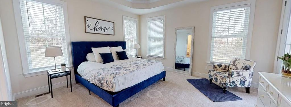 Master Bedroom on Main Level - 25532 EMERSON OAKS DR, ALDIE