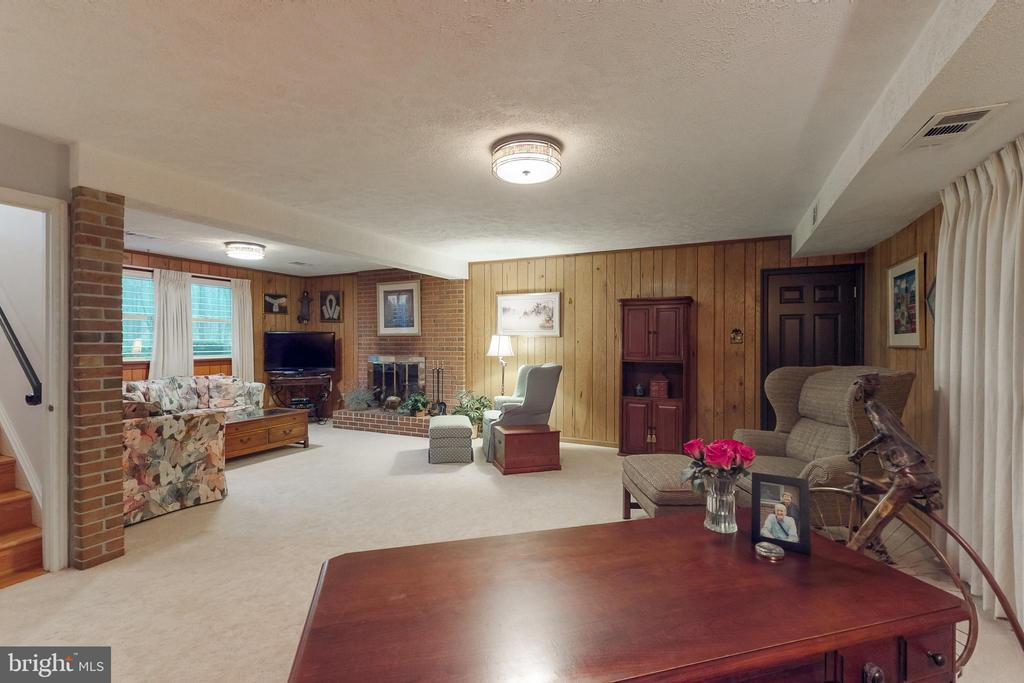 Recreation room - 12050 HICKORY HILLS CT, OAKTON