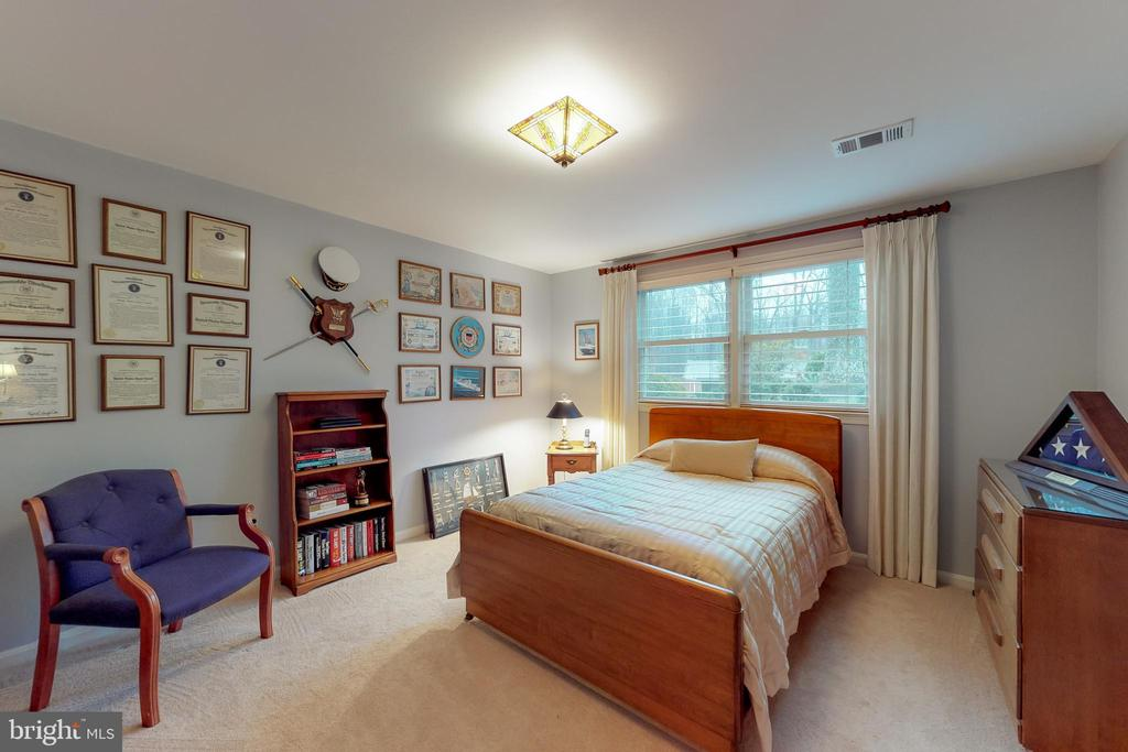 Another lower level  possible bedroom - 12050 HICKORY HILLS CT, OAKTON
