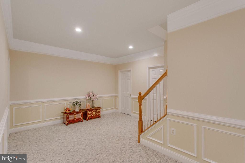 Lower Level - 11607 FOREST HILL CT, FAIRFAX