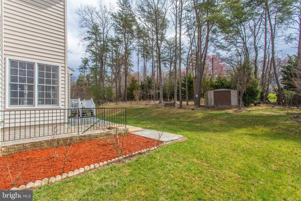 Backyard w/ Shed - 11607 FOREST HILL CT, FAIRFAX