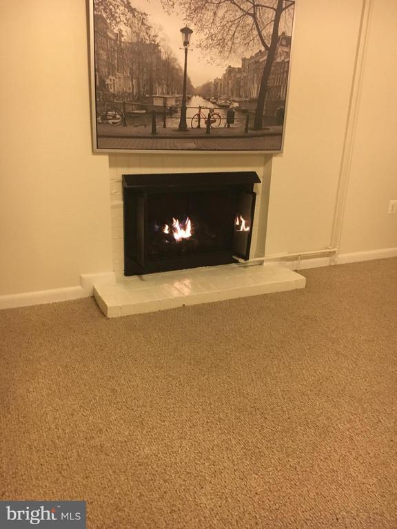 Cozy lower level with remote gas fireplace - 10263 WILDE LAKE TER, COLUMBIA