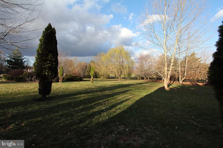 Gorgeous 3 acre lot-Alt view - 40674 JADE CT, LEESBURG