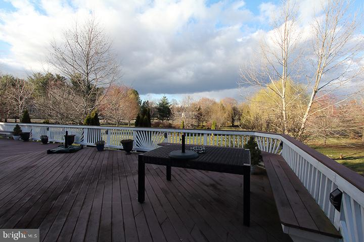 Stunning view of treed backyard - 40674 JADE CT, LEESBURG