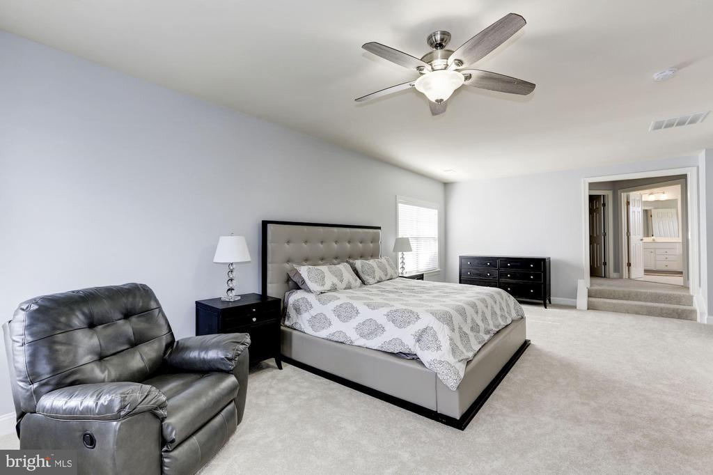 Owner's Suite - 44136 RIVERPOINT DR, LEESBURG