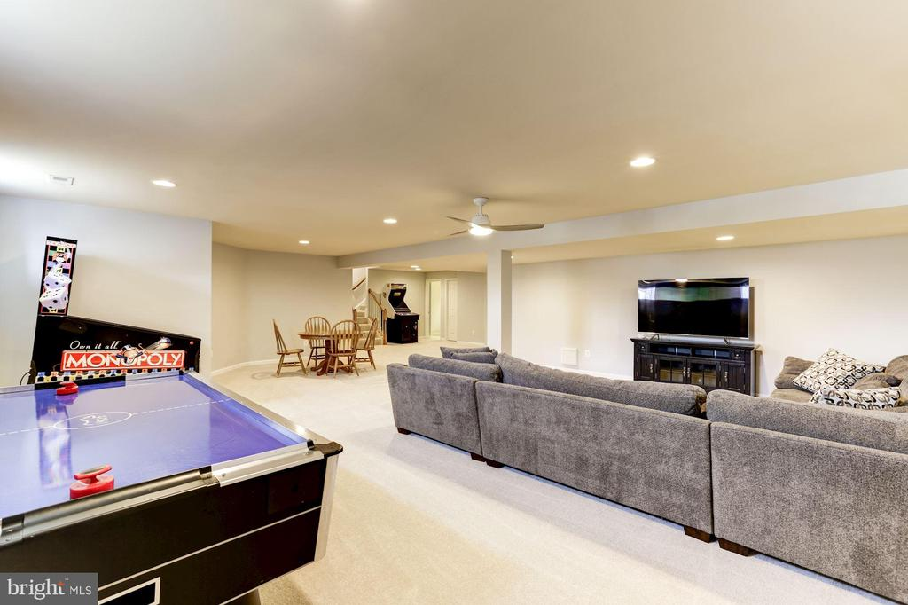 Recreation Room - 44136 RIVERPOINT DR, LEESBURG
