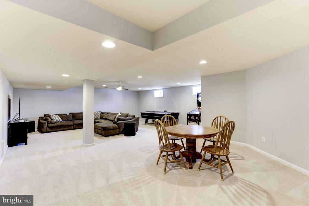 Lower Level Recreation Room - 44136 RIVERPOINT DR, LEESBURG