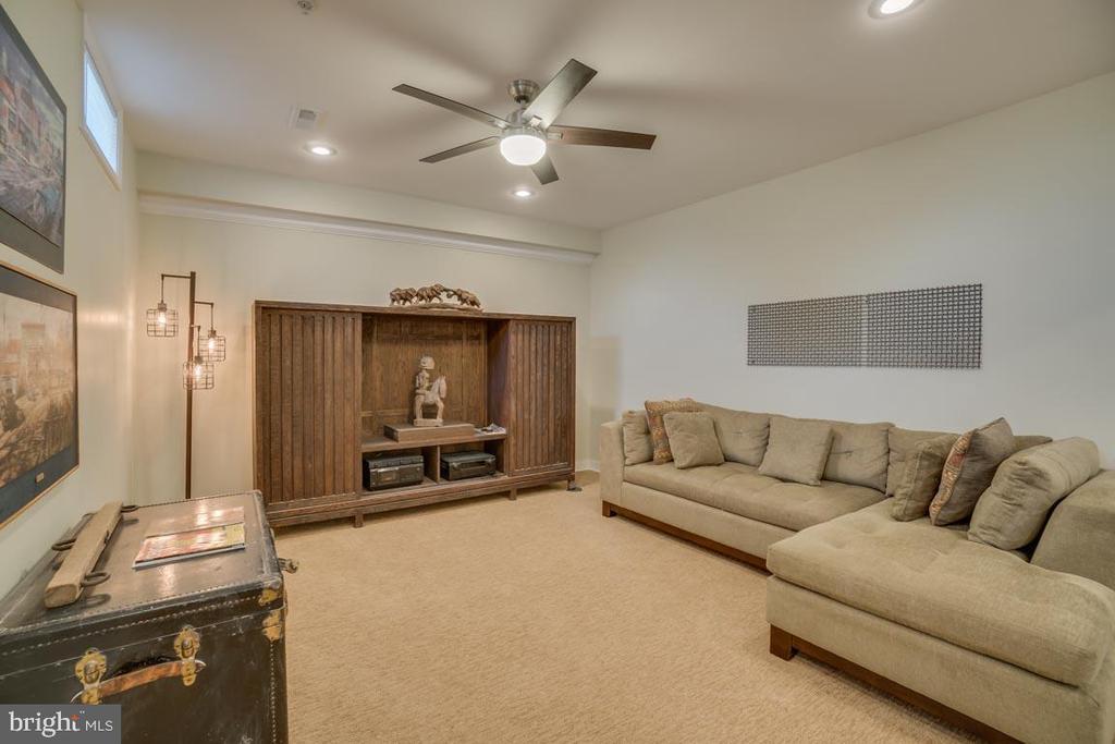 Lower level living room - 2192 POTOMAC RIVER BLVD, DUMFRIES