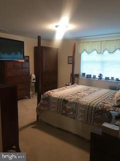 Lower level master bedroom - 9416 EVERETTE CT, SPOTSYLVANIA