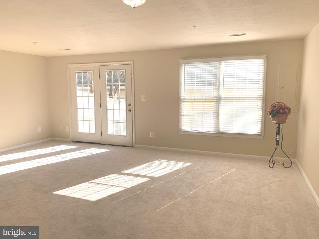 Recreation Room French Door to Backyard and Garage - 1112 RESERVE CHAMPION DR, ROCKVILLE