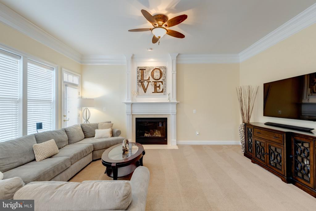 Family Room - Gas Fireplace - 43853 RIVERPOINT DR, LEESBURG