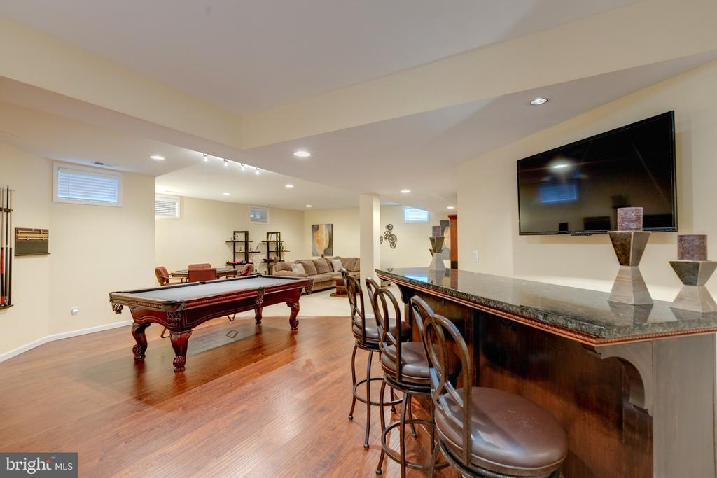 Lower Level - Gameroom - 43853 RIVERPOINT DR, LEESBURG