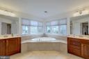 Master Bathroom -Double Vanity and Soaking Tub - 43853 RIVERPOINT DR, LEESBURG