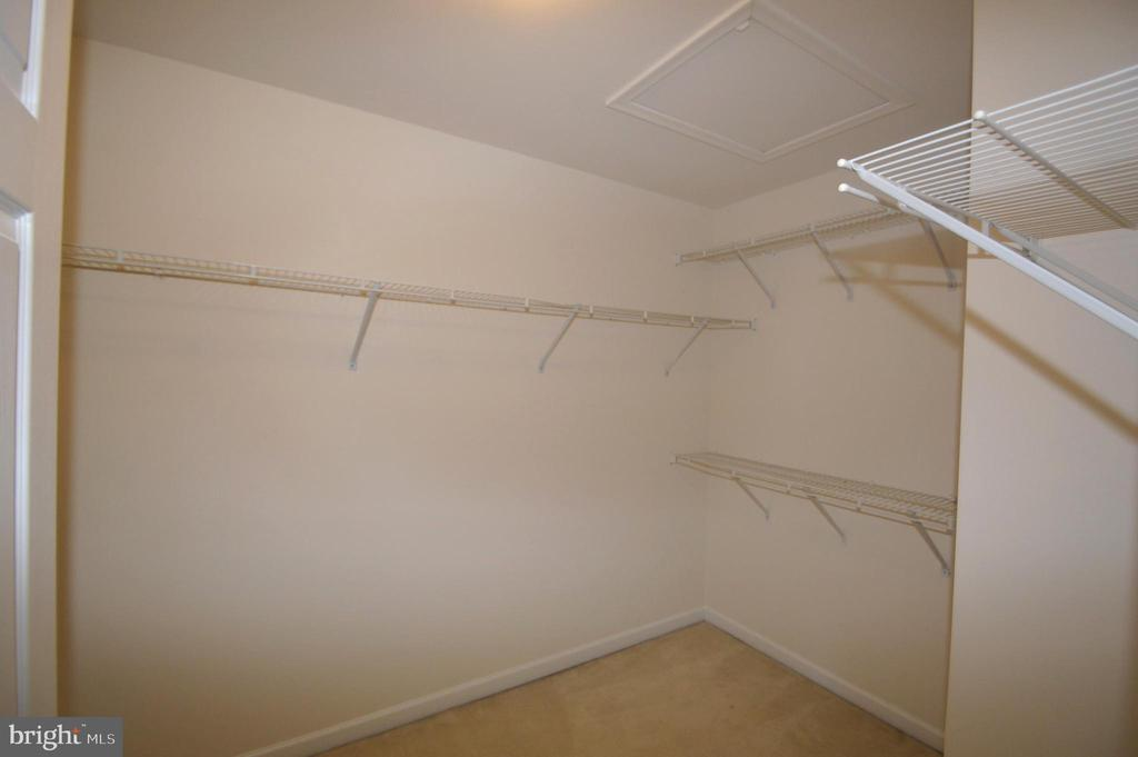 Owner's walk-in closet - 25989 DONOVAN DR, CHANTILLY