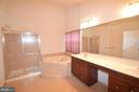 Owner's Bathroom - 25989 DONOVAN DR, CHANTILLY